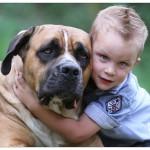 Lennox und Bo